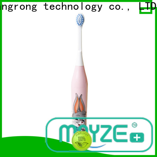MAYZE New number one electric toothbrush factory